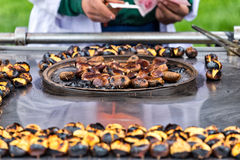 Chestnuts seller Stock Photography