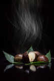 Chestnuts smoking in the dark Stock Images