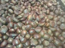 Chestnuts Stock Photos