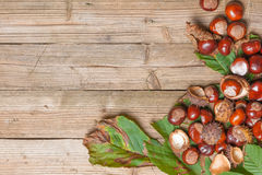 Chestnuts on a table. Chestnuts on a brown wooden table with some leaves stock photos
