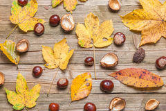 Chestnuts on a table. Chestnuts on a brown wooden table with some leaves royalty free stock photo