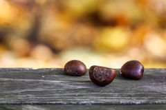Chestnuts on table Royalty Free Stock Photo