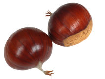 Chestnuts. Two beautiful chestnut, close-up Royalty Free Stock Images