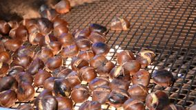 Chestnuts. Video stock footage