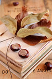 Chestnuts on vintage book pile Stock Photography
