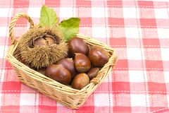 Chestnuts was served in a basket Royalty Free Stock Image
