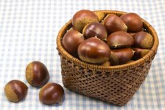 Chestnuts was served in a basket Stock Photos