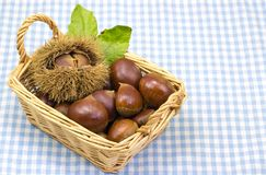 Chestnuts was served in a basket Stock Images