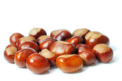 Chestnuts on a white Royalty Free Stock Image