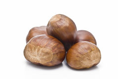 Chestnuts on white background. Some chestnuts isolated on white background stock photography