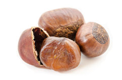 Chestnuts on white. Royalty Free Stock Image