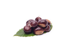 Chestnuts on white background. Castagne su sfondo bianco on white background Royalty Free Stock Image