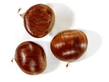Chestnuts   on a white. Stock Photos