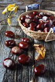 Chestnuts in  wicker basket and autumn leaves. On old wooden background Royalty Free Stock Image