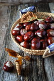 Chestnuts in wicker basket and autumn leaves. On old wooden background Royalty Free Stock Photos