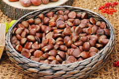 Chestnuts in a wicker basket. On the burlap background Stock Images