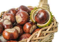 Chestnuts in wicker basket. On white background Stock Image