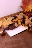Chestnuts on wooden background and blank paper card Royalty Free Stock Photos