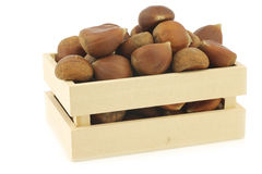 Chestnuts  in a wooden box Royalty Free Stock Photo
