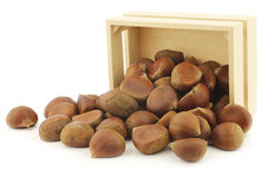 Chestnuts  in a wooden box Royalty Free Stock Image