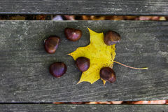 Chestnuts on wooden table Stock Photos
