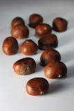 Chestnuts06 Foto de Stock Royalty Free