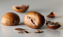 Chestnuts10 Royalty Free Stock Photography