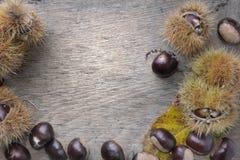 Chestuts dulces frescos en un tablón foto de archivo libre de regalías