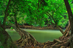 Chet Sao Noi vattenfall i Thailand Arkivfoton