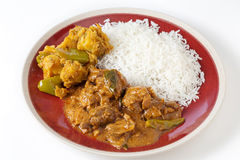 Chettinadu与veg和米的鸡咖喱 免版税库存照片