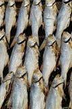 Cheung Chau fish market Stock Photo