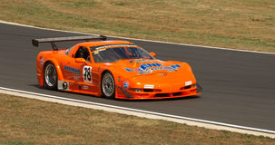 Chev Corvette Race Car Stock Image