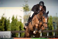 Cheval équestre Rider Jumping Décrivez montrer un concurrent exécutant en concurrence de sauter d'exposition image stock
