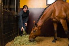 Cheval alimentant de femme Photo stock