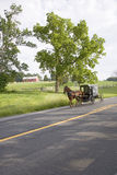 Cheval amish Images stock
