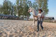 Cheval Arabe à l'exposition équestre photographie stock