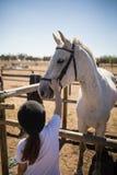 Cheval blanc émouvant de fille dans le ranch Image stock