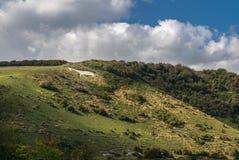Cheval blanc de Litlington en vallée de Cuckmere près d'Eastbourne photographie stock