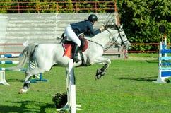 Cheval blanc et saut de tour de femme jockey de jeune femme beau au-dessus de la fourche dans le sport équestre Photos libres de droits