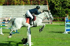 Cheval blanc et saut de tour de femme jockey de jeune femme beau au-dessus de la fourche dans le sport équestre Octobre - 05 2017 Photos stock