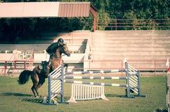 Cheval brun et saut de tour de jockey de jeune homme beau au-dessus de la fourche dans le sport équestre Photos stock