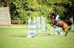 Cheval brun et saut de tour de jockey de jeune homme beau au-dessus de la fourche en plan rapproché de sport équestre Image libre de droits