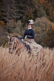 Cheval-chasse avec des cavaliers dans l'habitude d'équitation Images libres de droits
