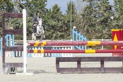 Cheval commençant à sauter plusieurs obstacles Images stock