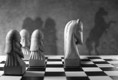 Cheval d'échecs se tenant comme chef du paquet Images libres de droits