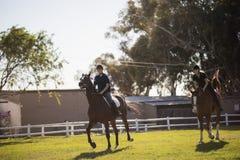 Cheval d'équitation d'amis au centre équestre Image libre de droits