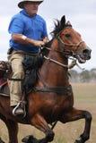 Cheval d'équitation d'homme à la vitesse Photo libre de droits
