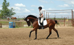 Cheval d'équitation de femme Photographie stock libre de droits