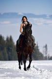 Cheval d'équitation de jeune femme extérieur en hiver Images libres de droits