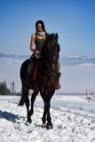 Cheval d'équitation de jeune femme extérieur en hiver image libre de droits